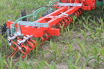 Loonbedrijf Kats zaait gras onder de maïs met Güttler machine